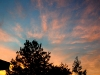 sunsetf454dpress
